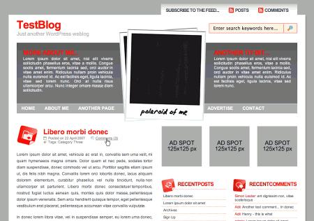 Wp-polaroid in 100 Excellent Free WordPress Themes