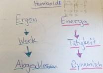 Humboldt-Einfuehrung-Linguistik-Rosenber-EUV-WiSe2017:18