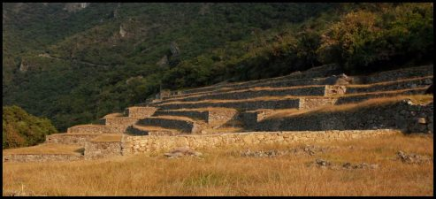 agricultural terraces near the caretaker house