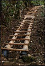 une des premières échelles à grimper/ one of the ladders to climb