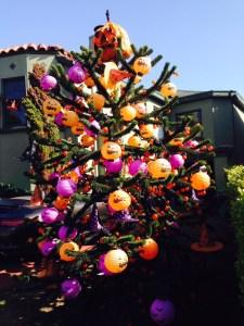 Halloween Tree photo by Mason Jones.