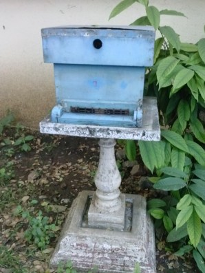One of the beehives placed in the garden at the institute