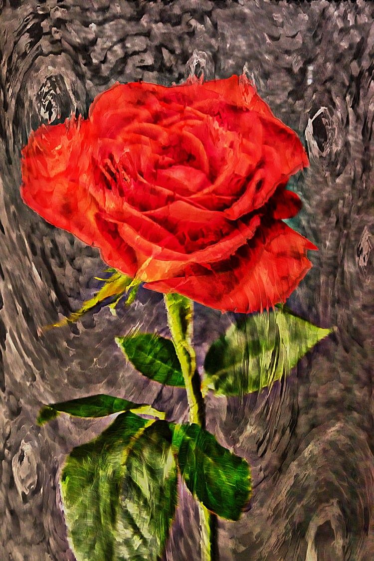 Up close of a single red rose with a Van Gogh filter applied to create a Digital Art Image