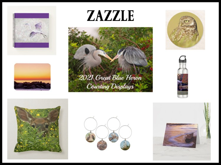 Website link for Zazzle to purchase Lori A Cash's wildlife and nature photography as print-on-demand products.