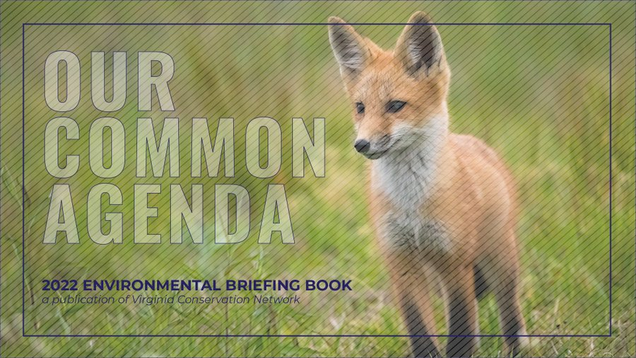 2022 Our Common Agenda Environmental Briefing Book by Virginia Conservation Network