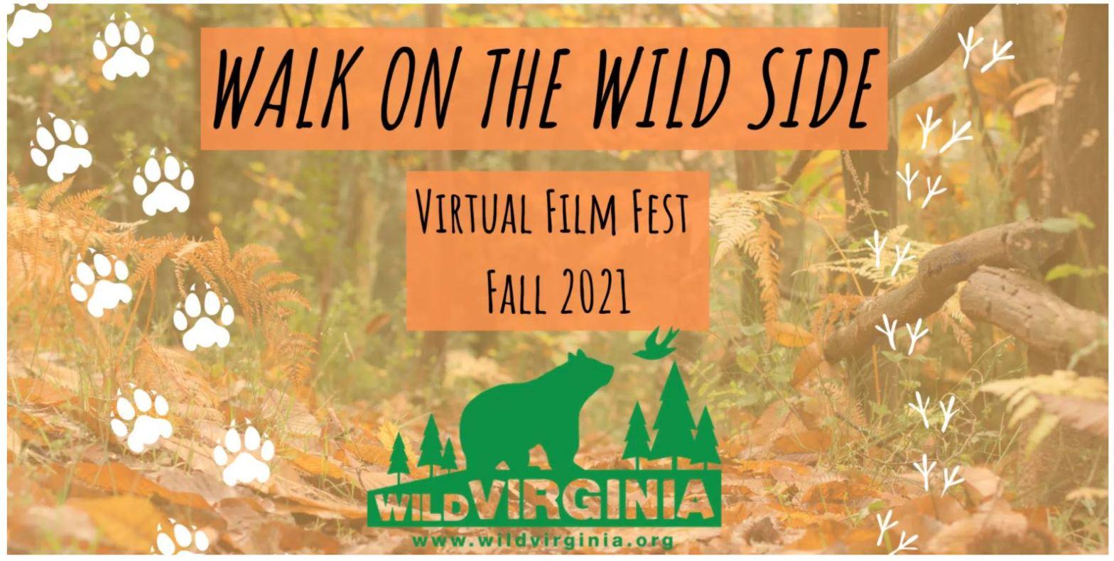 Wild Virginia Walk on the Wild Side Virtual Film Fest 2021
