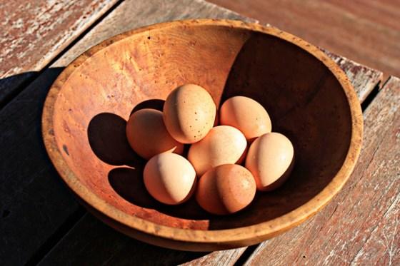 eggs004