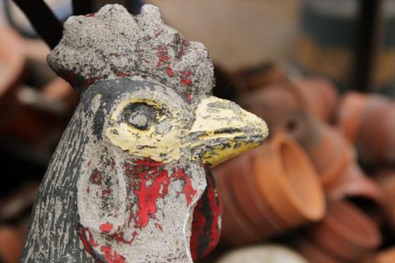 Flea Market, Rooster