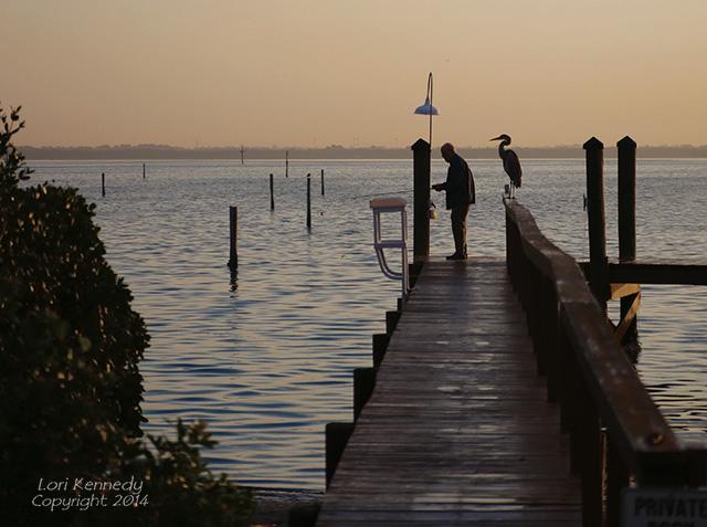 Man, Heron, Fishing