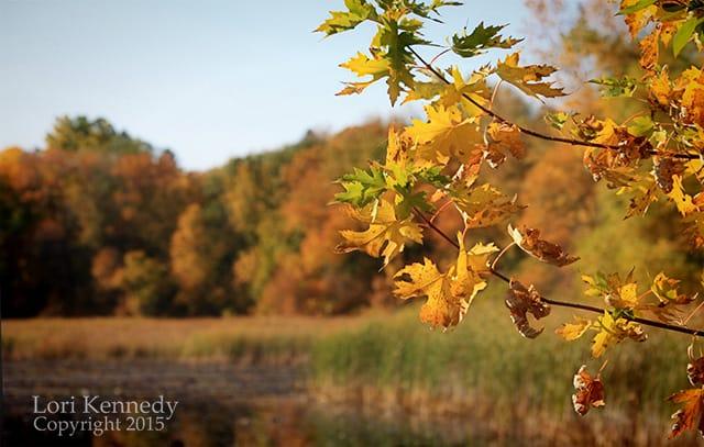 Autumn, Minnesota