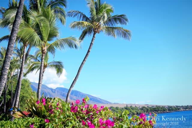 Hawaii, Lori Kennedy