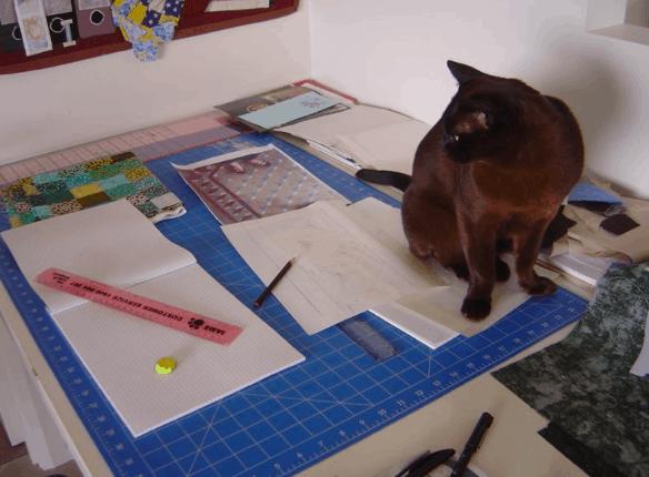 Annette's Burmese Cat, Brannie Australia