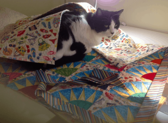 Bette Ingoglia's, Casey helps bind quilts! Maybe I need a kitty!