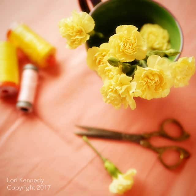 Carnations, vintage Sewing Notions
