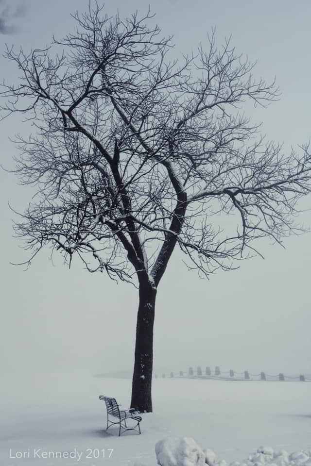 Stillwater Minnesota Winter