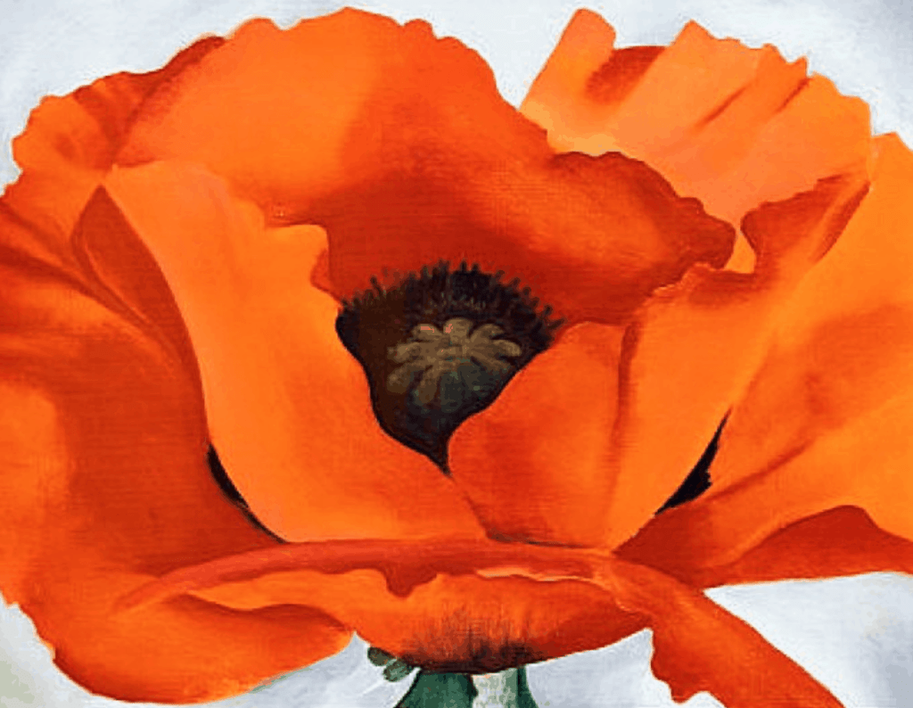 Georgia OKeeffe, Red Poppy