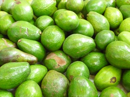Mountains of avocados
