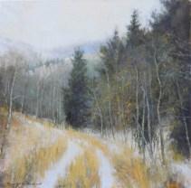 Early Winter Walk