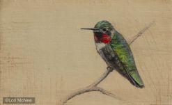 ©2012 Lori McNee Hummingbird l 5x7 Graphite on panel