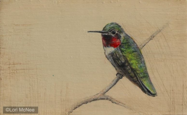 ©2012 Lori McNee Hummingbird l 5x7 Graphite on panel