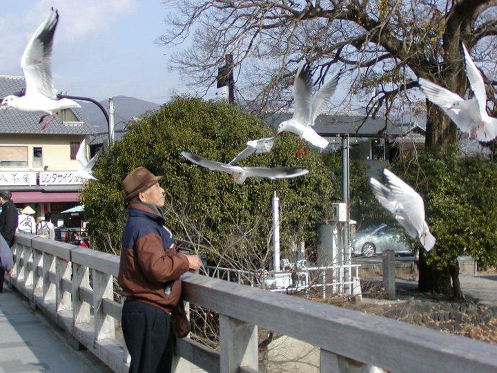 bird man 1
