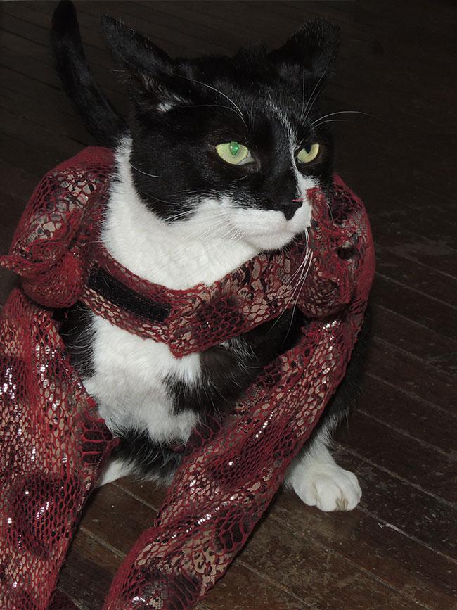 truman-in-costume