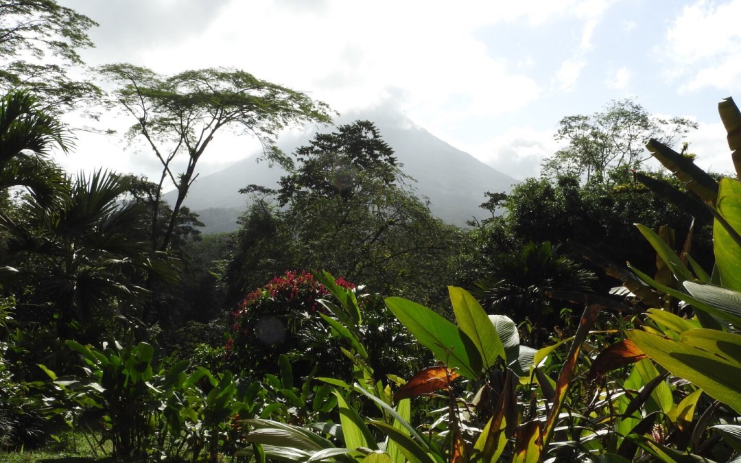 First View of the Volcano