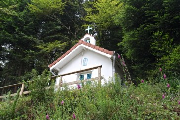 Bourg-Bruche-Chapelle-du-Solamont-23