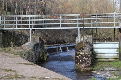 Moyenmoutier-Barrage-de-la-Prelle-08
