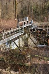 Moyenmoutier-Barrage-de-la-Prelle-11