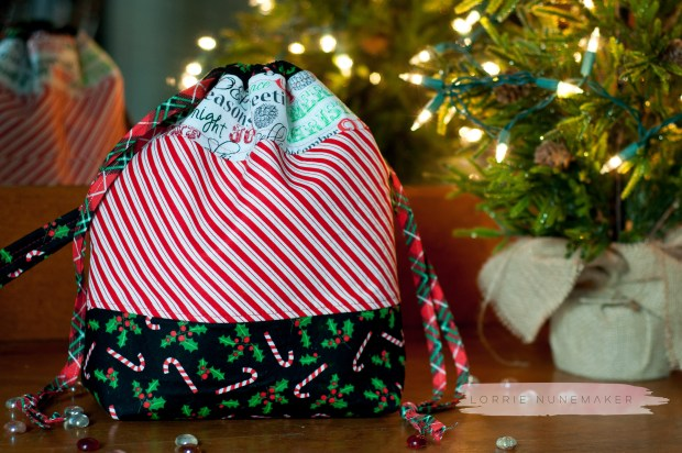 Christmas Project Bag-10