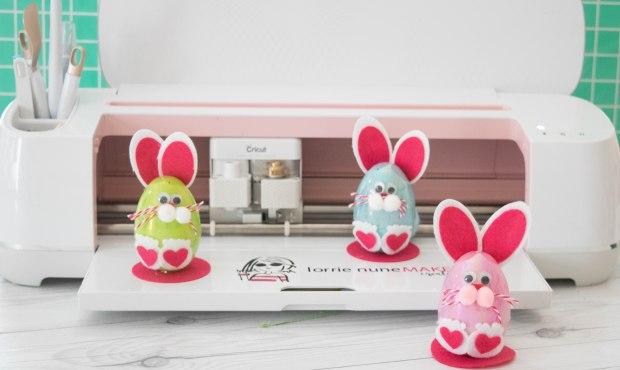 bunny edgg-7
