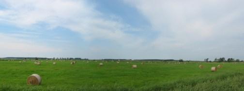 Usedom's Landschaft