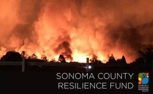 Help Napa and Sonoma fires survivors