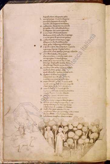 Dante-Boccaccio