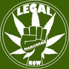 LegalMarijuanaNowLogo