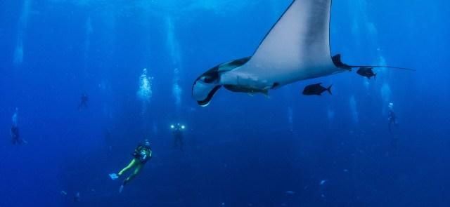 Water Activities in Cabo San Lucas