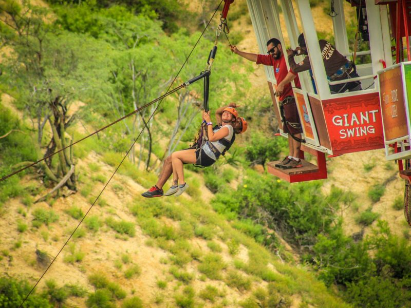 Wild Canyon Sling Swinger