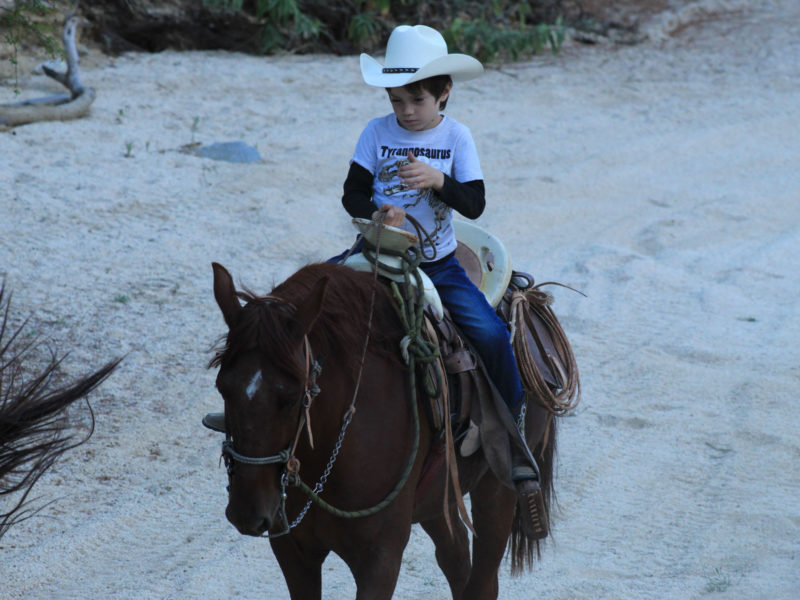 Wild Canyon Horseback Riding Tour