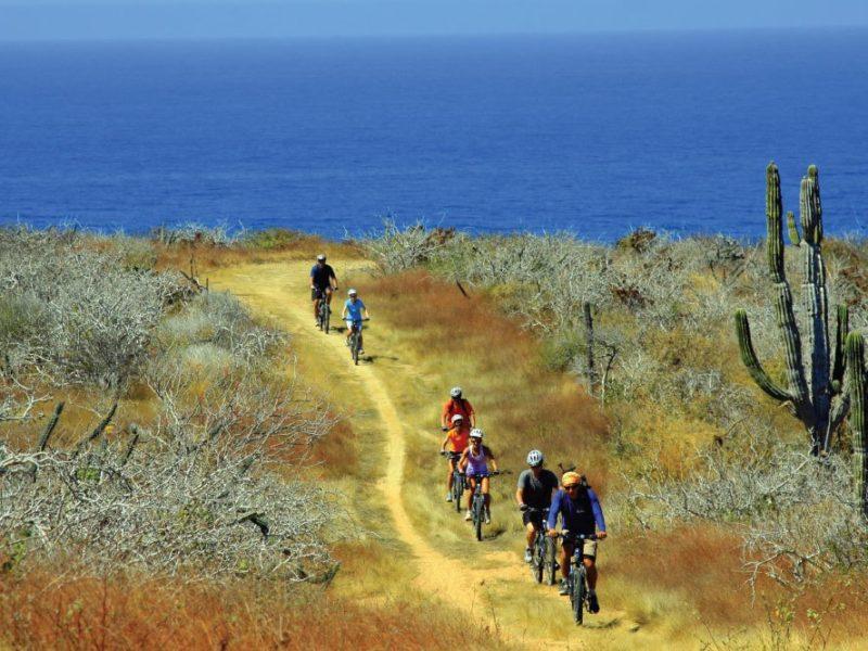 Mountain-Bike-Cabo-Adventures1
