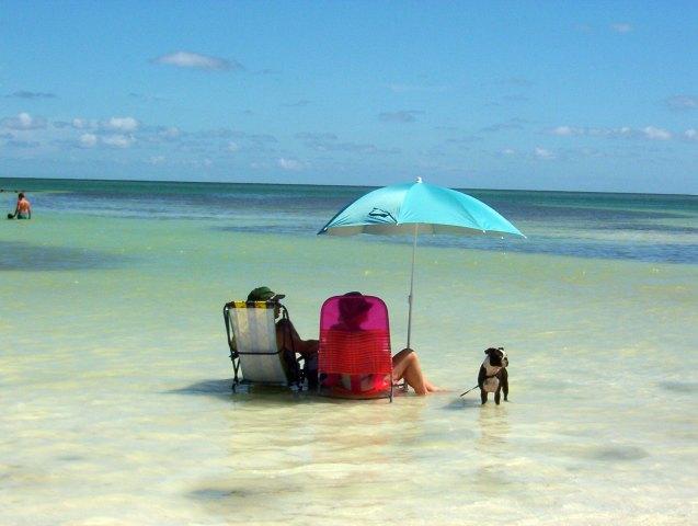 Anne's Beach Playa de Islamorada Cayos de la Florida