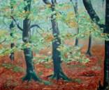 Selva de Irati. Óleo sobre lienzo. 55x46cm. 35€.