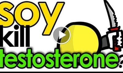 Does Soy Lower Testosterone
