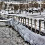 Ice fringe in the Watkins Glen marina.