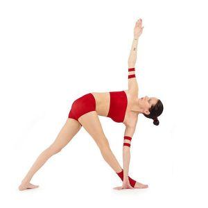 480px-Parivrtta-Trikonasana_Yoga-Asana_Nina-Mel