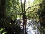 Paseando por la laguna de Zapatilla 2, parece que hoy el caimán está escondidito...