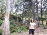 Llegamos al parque Arví