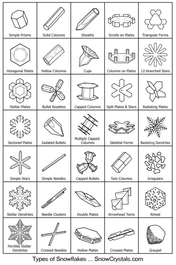 Tipos de copos de nieve o agua.
