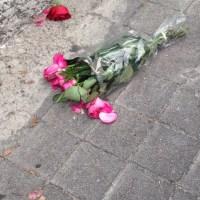 Rosas dan color a asfalto de la Ciudad de México