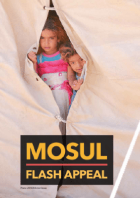 597721-mosul_flash_appeal_final_web.png